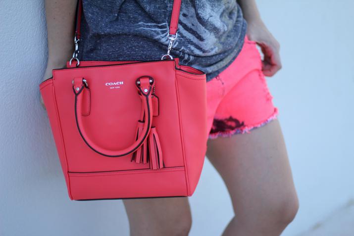 Coach bag (1)
