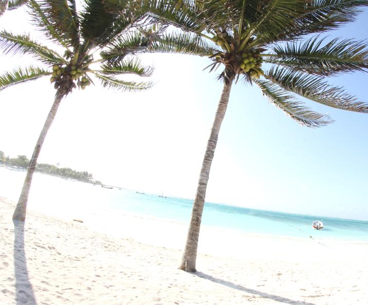 Tulum beach (2)